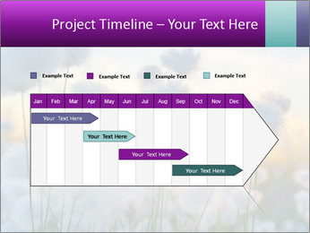 0000085046 PowerPoint Template - Slide 25