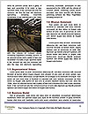 0000085062 Word Templates - Page 4