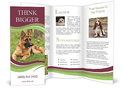 0000085095 Brochure Template