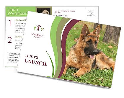 0000085095 Postcard Template