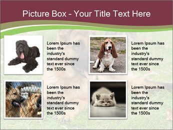 0000085095 PowerPoint Template - Slide 14
