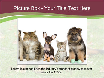 0000085095 PowerPoint Template - Slide 16