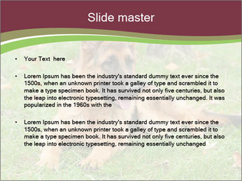 0000085095 PowerPoint Template - Slide 2