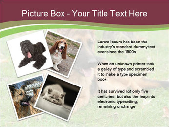 0000085095 PowerPoint Template - Slide 23
