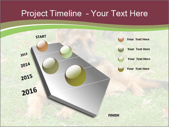 0000085095 PowerPoint Template - Slide 26