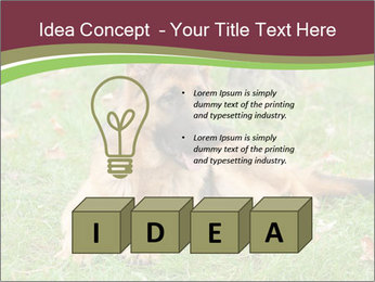 0000085095 PowerPoint Template - Slide 80