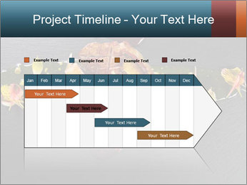 0000085098 PowerPoint Template - Slide 25