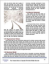 0000085109 Word Template - Page 4