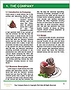 0000085128 Word Template - Page 3