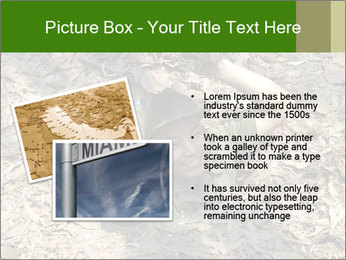0000085143 PowerPoint Template - Slide 20