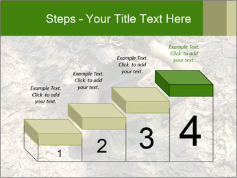 0000085143 PowerPoint Template - Slide 64