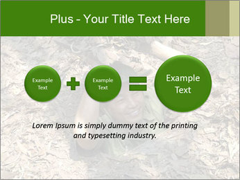 0000085143 PowerPoint Template - Slide 75