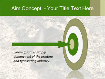 0000085143 PowerPoint Template - Slide 83