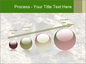 0000085143 PowerPoint Template - Slide 87