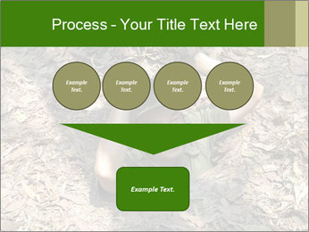 0000085143 PowerPoint Template - Slide 93