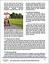 0000085144 Word Templates - Page 4
