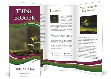 0000085149 Brochure Template