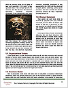 0000085155 Word Templates - Page 4