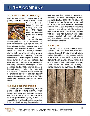 0000085161 Word Template - Page 3