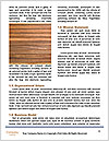 0000085161 Word Templates - Page 4