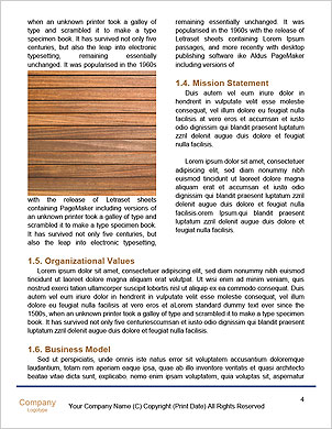 0000085161 Word Template - Page 4
