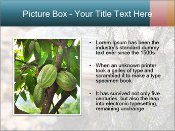 0000085180 PowerPoint Template - Slide 13