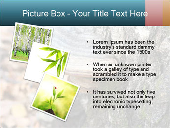 0000085180 PowerPoint Template - Slide 17