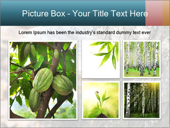 0000085180 PowerPoint Template - Slide 19