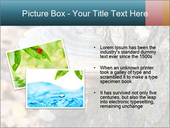 0000085180 PowerPoint Template - Slide 20