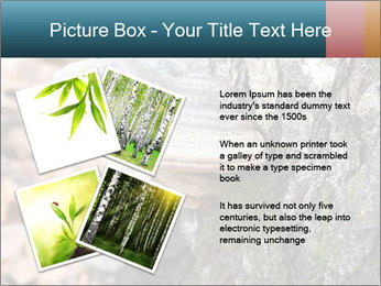 0000085180 PowerPoint Template - Slide 23