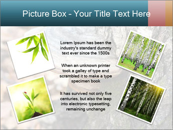 0000085180 PowerPoint Template - Slide 24