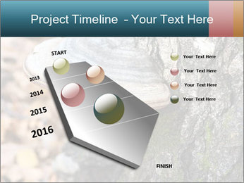 0000085180 PowerPoint Template - Slide 26