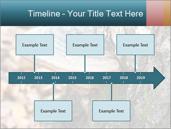 0000085180 PowerPoint Template - Slide 28