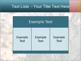 0000085180 PowerPoint Templates - Slide 59