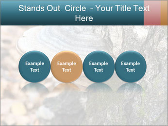 0000085180 PowerPoint Templates - Slide 76