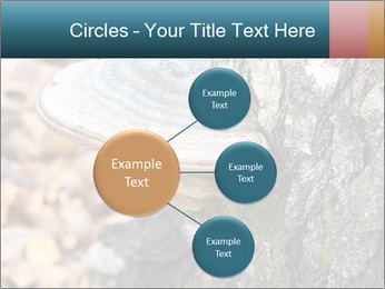 0000085180 PowerPoint Templates - Slide 79