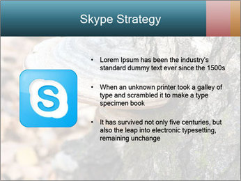 0000085180 PowerPoint Template - Slide 8