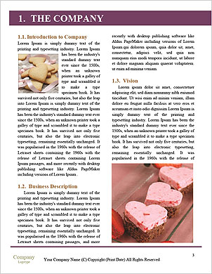 0000085181 Word Template - Page 3