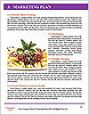 0000085190 Word Templates - Page 8