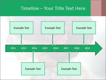 0000085198 PowerPoint Templates - Slide 28