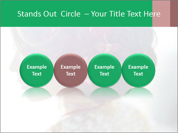 0000085198 PowerPoint Templates - Slide 76