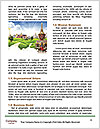 0000085199 Word Templates - Page 4