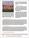 0000085208 Word Template - Page 4
