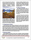0000085209 Word Templates - Page 4