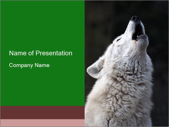 0000085224 PowerPoint Template - Slide 1