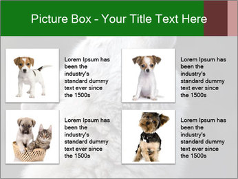 0000085224 PowerPoint Templates - Slide 14