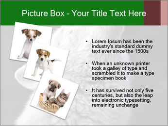 0000085224 PowerPoint Templates - Slide 17