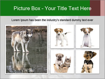 0000085224 PowerPoint Template - Slide 19