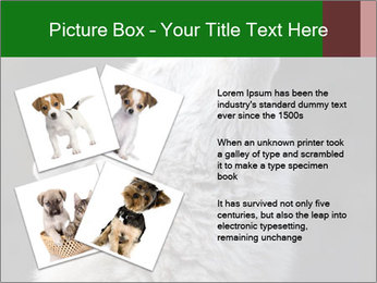 0000085224 PowerPoint Templates - Slide 23