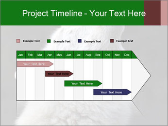 0000085224 PowerPoint Template - Slide 25
